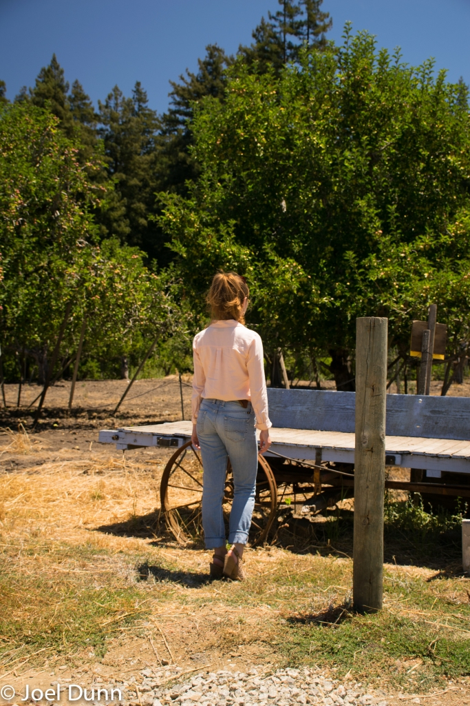 Collared shirt, Lucky Jeans, apple orchard