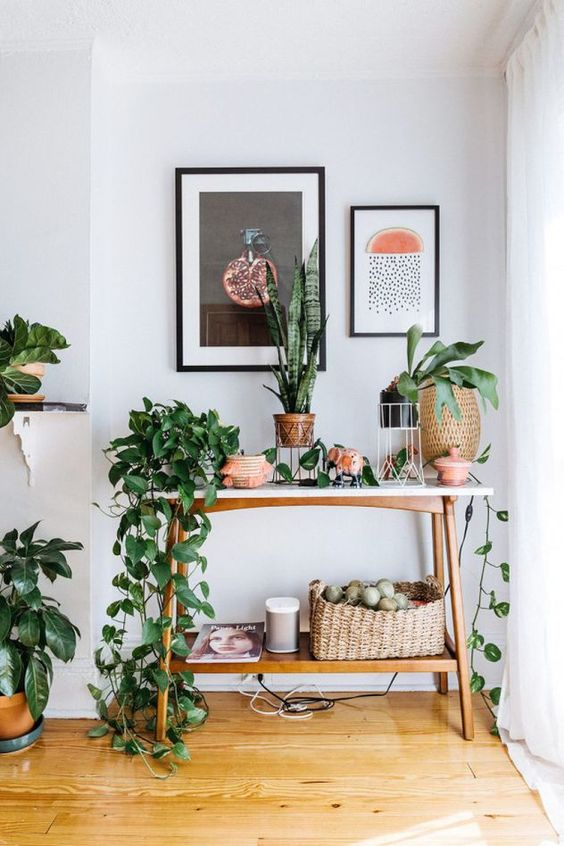 spring, decor, plants, homes, green, april