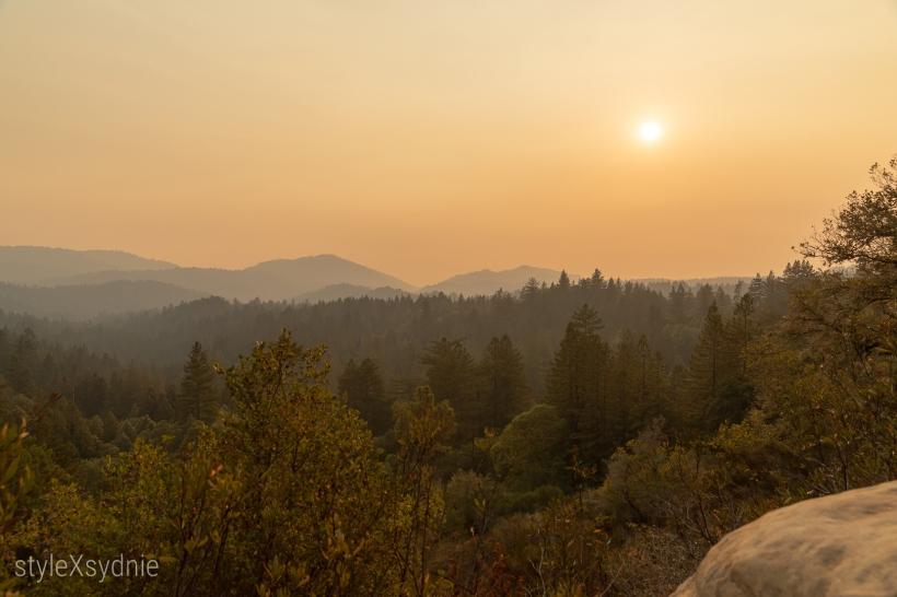 New Year's Resolutions, Santa Cruz Mountains,
